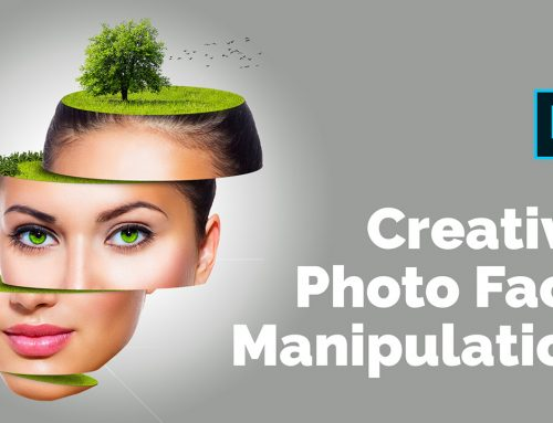 Creative Photo Face Manipulation