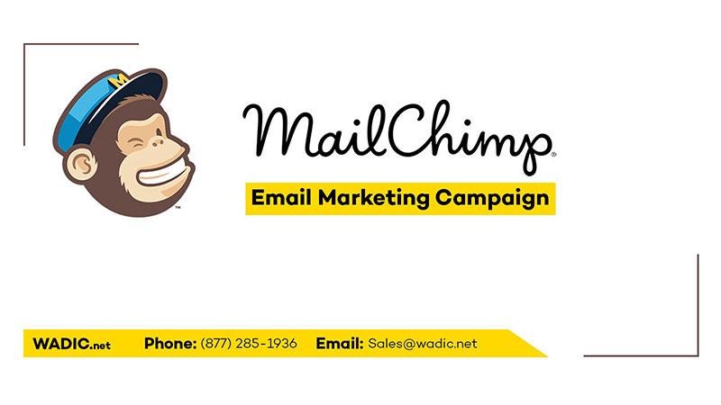 brand identity mailchimp